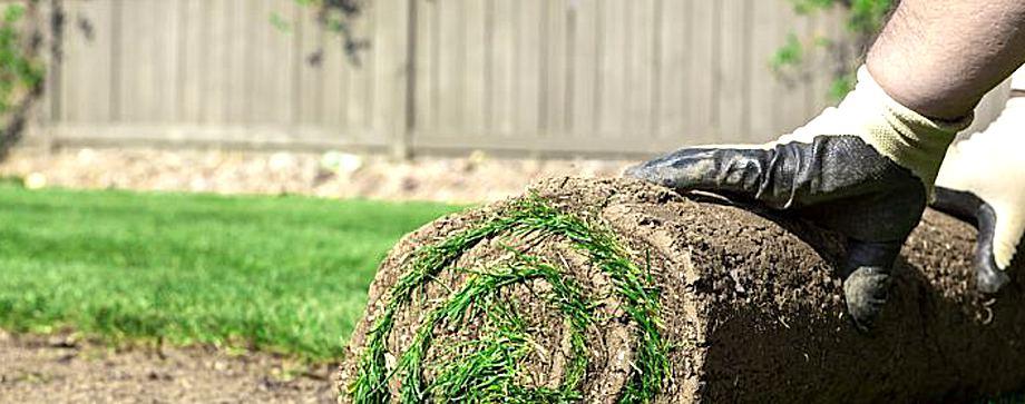 hartmann norbert gartengestalter - hartmann garten- und landschaftsbau, Garten ideen
